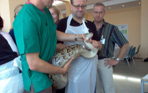 Reptilien Seminar - Timmendorf